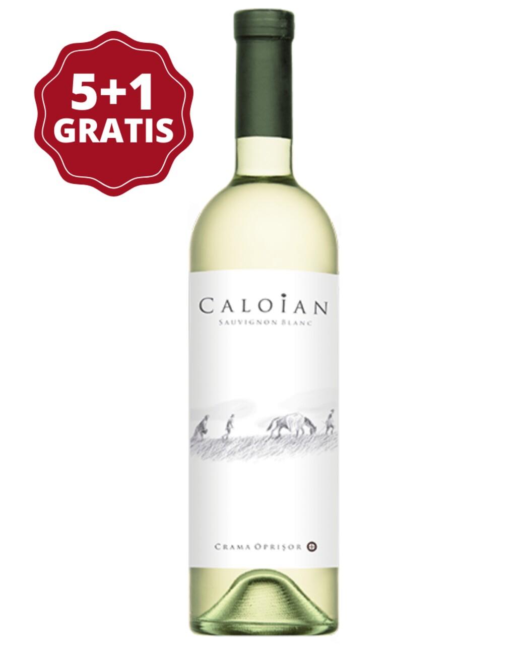 Oprisor Caloian Sauvignon Blanc 5+1